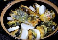 草魚和白蘿蔔,往砂鍋裡一放,香嫩可口,3斤大草魚不夠吃