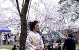 花美,景美,人更美,去日本看櫻花,美醉了