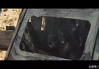 《荒蠻故事》南美鬼才導演一次對於人類失控行徑的顛覆性創作