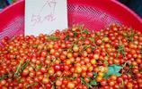 櫻桃5元一斤啦 湖北宜昌小溪塔商家賣水果掠影