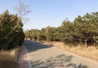 遼寧黑山101高地