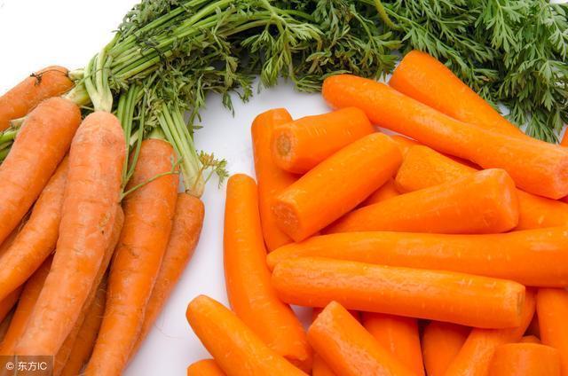 蔬菜為什麼寵物不可缺少
