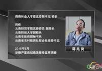 """雲南一起金融領域腐敗大案浮出水面,3個""""當家人""""為何先後跌落馬下?"""