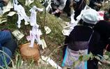侗族清明祭祖儀式