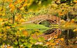 德國的秋色簡直驚豔了 沒得讓人心醉 適合窮遊