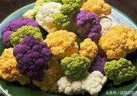 ins色彩,你見過彩色的花椰菜嗎?
