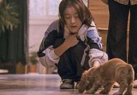 從《狗十三》看真實的青春期親子關係