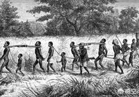 商朝的奴隸從哪裡來?商朝的奴隸都是什麼人組成的?