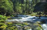放飛心情,一起去森林看美麗風景,聽小溪潺潺,擁抱自然