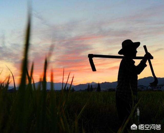 為什麼現在有些農村人到了70多歲還在幹活為孩子賺錢?