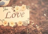問世間,情為何物,直教生死相許?元好問的詞道盡了愛情裡的永恆