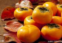 防癌大PK!柿餅的抗癌效果比新鮮柿子高4倍