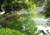 這個西湖是惠州的