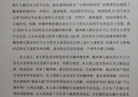 《最強大腦》選手梅軒宇承認捏造魏坤琳桑潔不正當關係的謠言