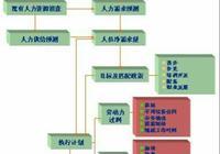 人力資源規劃的程序