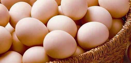 男人要多吃枸杞煮雞蛋,遠離陽痿,降低血壓、膽固醇!
