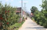 組圖:膠東地區鞏姓人不多見,煙臺蓬萊有個鞏家村