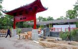 柏林動物園新建熊貓館