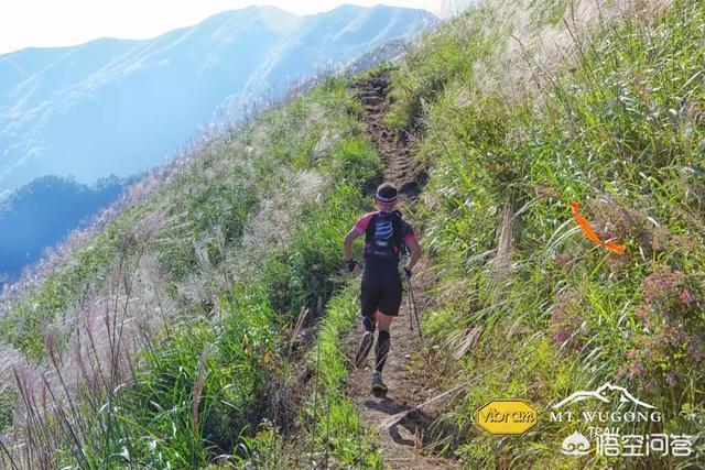 如果一個人每天慢跑5公里,大約40分鐘左右,保持正常飲食,你覺得這樣減肥有效果嗎?為什麼?