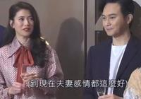 張智霖談片酬全被袁詠儀把控,自曝常常吵架,根本不是模範夫妻
