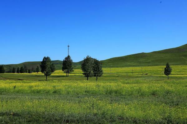 與你相約——壩上草原