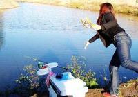識魚懂魚,要了解魚群的這些習性,找魚道魚窩才有把握