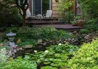 讓人心生禪意的庭院池塘設計