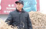 7旬老人為不給兒女增加負擔,每天去田間挖草根,日掙300多元