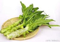 萵苣的功效與作用及禁忌