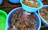 實拍潿洲島海鮮市場,遊客這樣做吃一餐海鮮不到100元