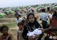 假如沒有外來勢力緬甸政府,能解除民地武裝和解決羅興亞人嗎?為什麼?