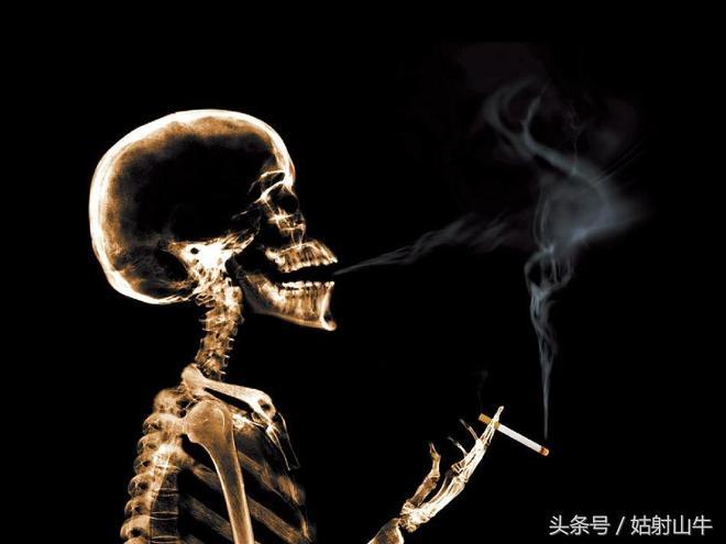 一組X光透視下的日常生活照,讓你看清自己的真面目