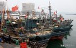 漁民滿倉而歸,島城市民岸邊等待,活海鮮剛上岸就被搶購一空