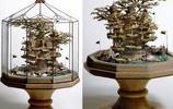 盆栽中的幻想樹屋建築
