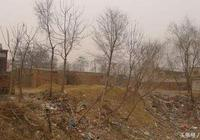 農村房子建大了不用慌,這些超佔的宅基地可以這樣確權!