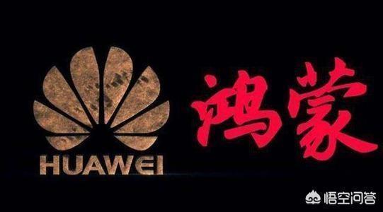 如果美國谷歌停止向中國所有手機企業供應安卓,那該怎麼辦?