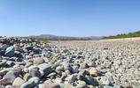 春天的洮河邊原來這麼美,據說這裡要開發洮河溼地公園,真的嗎?