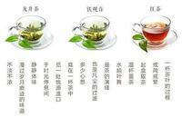 越飲越開心越飲越健康,夏季飲茶小知識
