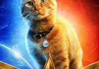 《驚奇隊長》噬元獸,滅霸也不敢輕易招惹它,為何外表是喵星人?