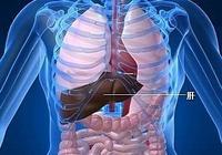 「治療」發現肝癌如何治療好?