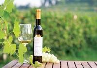 為什麼冰酒比普通葡萄酒貴,怎樣挑選冰酒呢?
