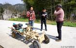 """湖北66歲農民自造木頭""""寶馬""""車, 8公里路跑30分鐘"""