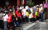 萬人排隊爭睹牡丹芳容,家長一路抱著孩子,累到腰疼只為拍張照片