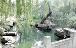 風景圖集:華東山東五龍潭,四月和十月這裡百花齊放,景色迷人!