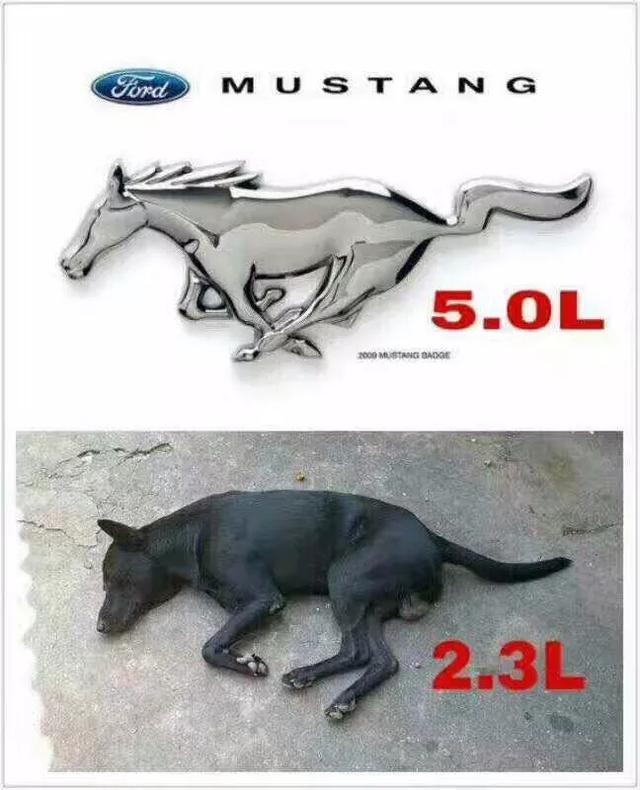 2.3T的福特野馬值不值得買?