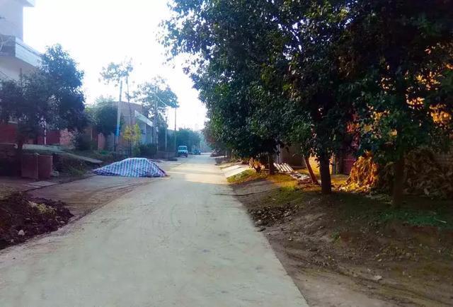 在渭南,有一個地方叫樊莊村
