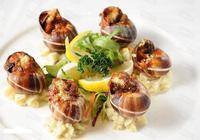 法國的優雅 讓精緻的法國美食告訴你