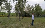 潘長江的女兒潘陽帶孩子出來遊玩,素顏的潘陽好漂亮!