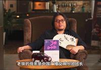 高曉鬆:老狼母親是中國廣播交響樂團團長,說老狼根本就不能唱歌
