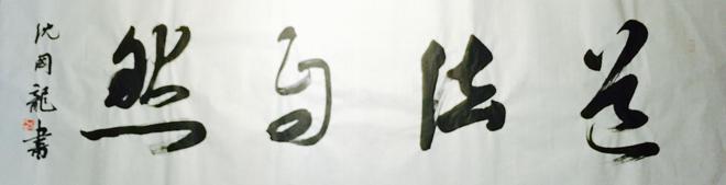 沈國龍書法作品欣賞